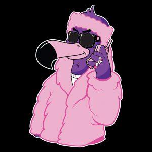 Pink Cameron